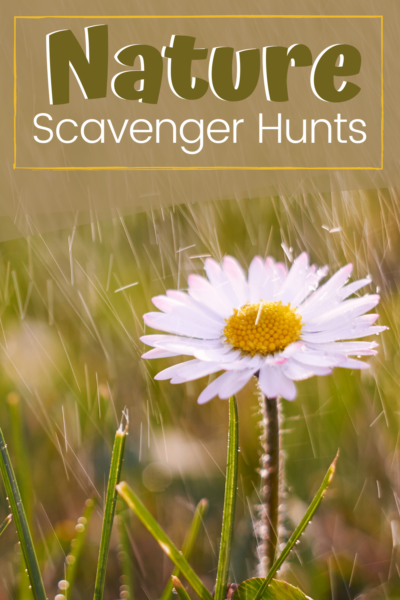 As the weather begins to warm up, why don't you plan some nature scavenger hunts for the kids? They can be done in the neighborhood or backyard.