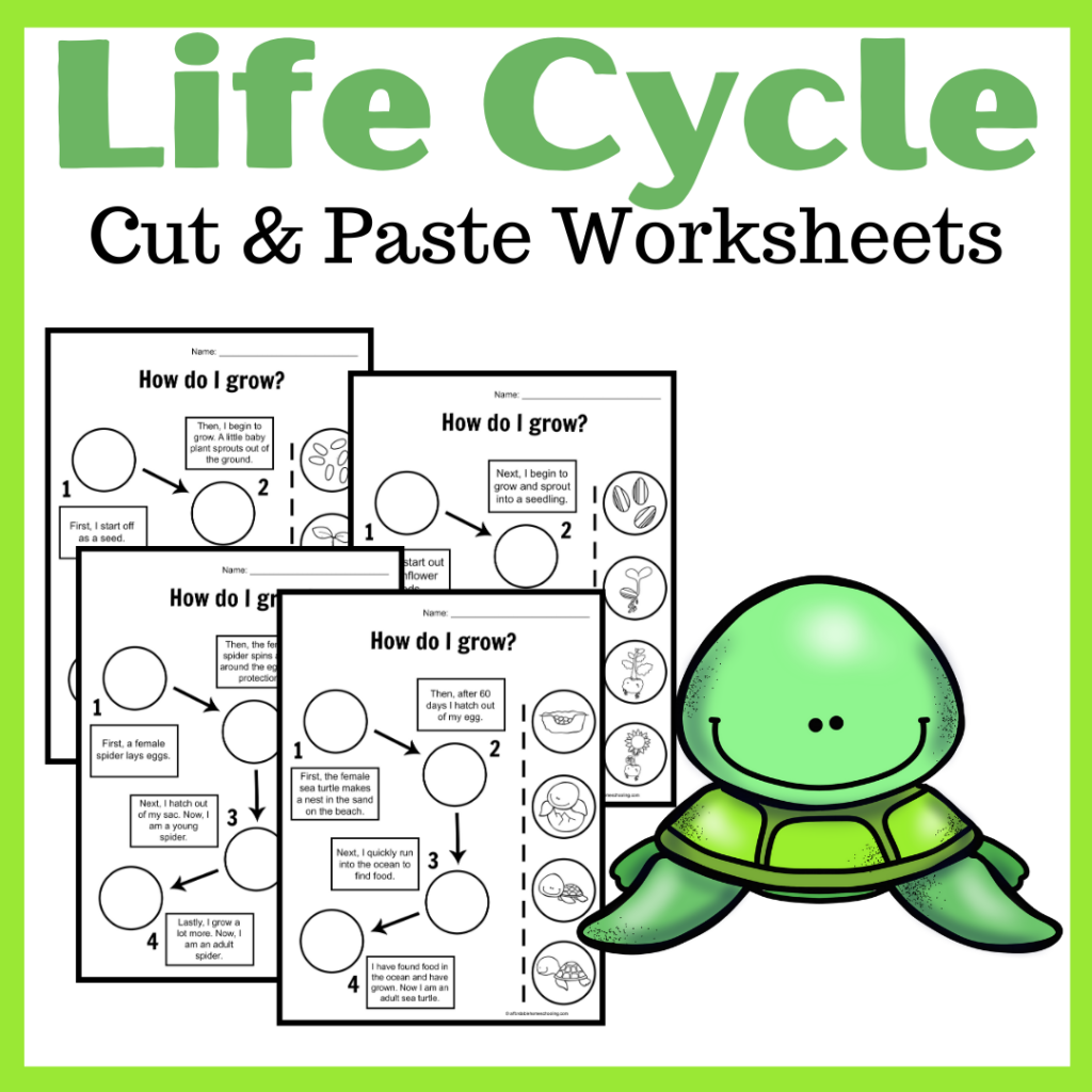 Download and print this set of life cycle cut and paste worksheets to help review eleven different life cycles! Perfect for K-2 students.