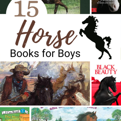 Horse Books for Boys