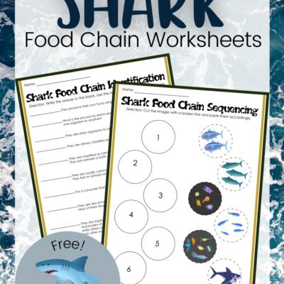 Shark Food Chain Printables