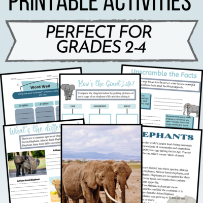 Printable Elephant Activities for Kids