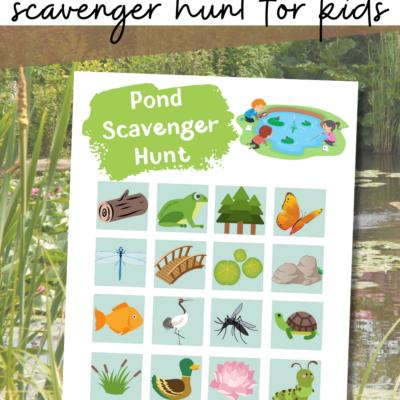 Pond Scavenger Hunt