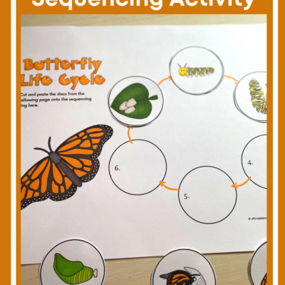 Butterfly Life Cycle Sequencing Activity